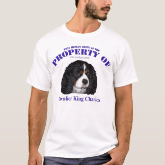 This Human property of Cavalier King Charles T-Shirt
