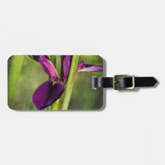 This is a Louisiana Gamecock Wildflower - Iris hex Luggage Tag