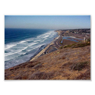 This Is From Torrey Pines State Park Poster