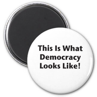 This is What Democracy Looks Like! Magnet
