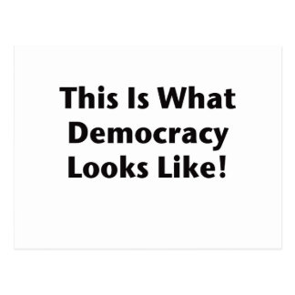 This is What Democracy Looks Like Post Card