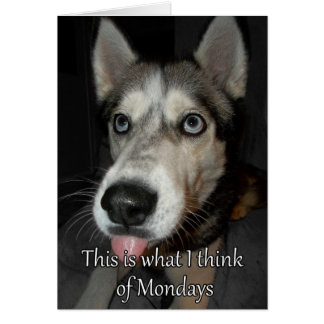This is what I think or Monday Greeting Card