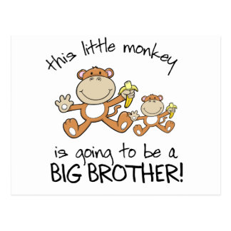 this little monkey big brother postcard