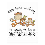 this little monkey big brother postcards