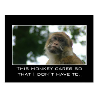 This monkey cares so that I don't have to Postcard