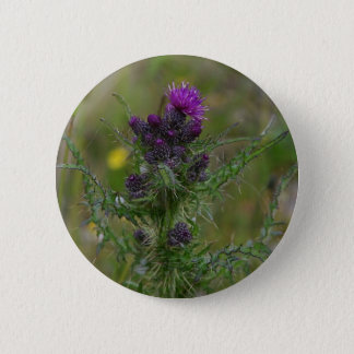 Thistle 6 Cm Round Badge