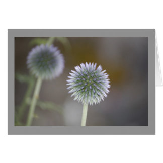Thistle Blank Note Card