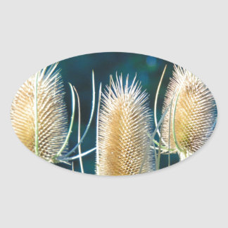 Thistle Trio Oval Sticker