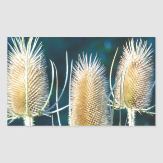 Thistle Trio Rectangular Sticker