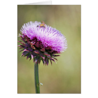 """""""Thistle with Bee""""  collection Card"""