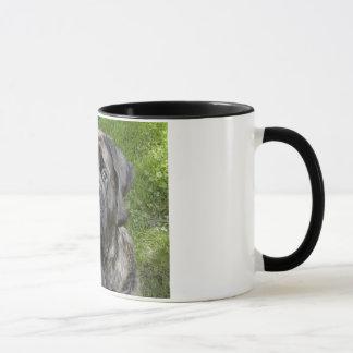 Thor Mastiff Mug
