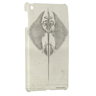 Thornback Skeleton Case For The iPad Mini
