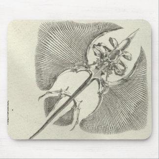 Thornback Skeleton Mouse Pad