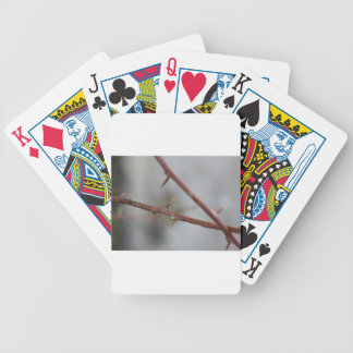Thorns Bicycle Playing Cards