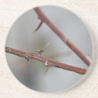 Thorns Coaster