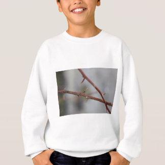 Thorns Sweatshirt