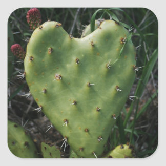 Thorny Heart Square Sticker