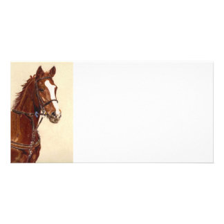 Thoroughbred Horse Art Card Customized Photo Card