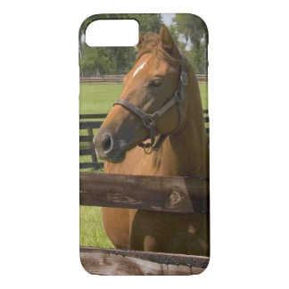 Thoroughbred horse farm in Marion County, iPhone 7 Case