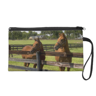 Thoroughbred horse farm in Marion County, Wristlet Clutch