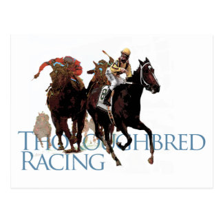 Thoroughbred Horse Racing Gifts Postcard