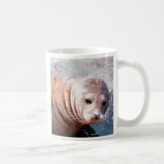 Thoughtful Seal Coffee Mug