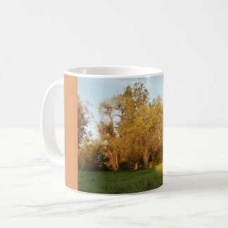 Thousand Oaks Park in San Jose, California Coffee Mug