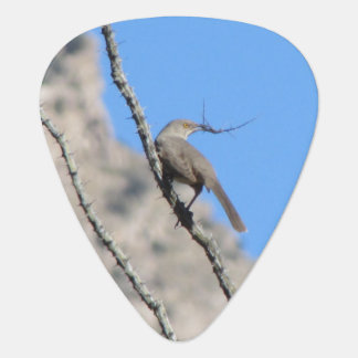 Thrasher with Nesting Material Guitar Pick