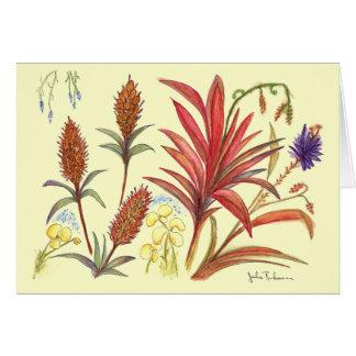 Three Amazing Spiky Flowers Card