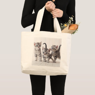 Three American Shorthair Playing Large Tote Bag