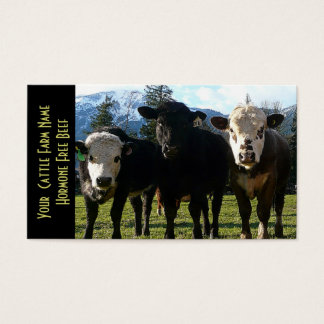 Three Amigos Beef Cattle Business Card