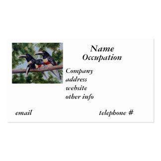 Three Amigo's Toucan Business Cards