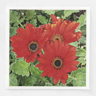 Three as they bloom in red disposable serviette