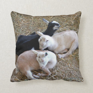 Three Baby Goats Cushion