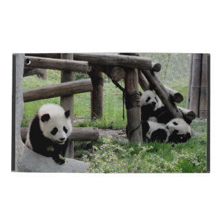 Three Baby Pandas iPad Cover