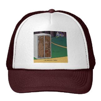 Three Bears Hat
