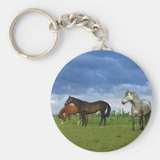 Three beautiful horses on sunny Summer day Key Ring