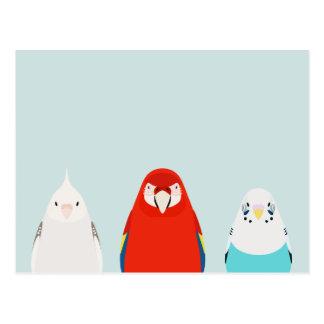 Three Birds illustration - tori no iro Postcard