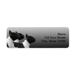 Three Black and White French Bulldogs Return Address Label