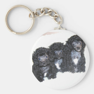 Three black/silver Toy poodle puppies Basic Round Button Key Ring