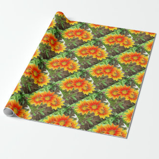 Three Bright Colored Gazania Flowers and Garden Wrapping Paper