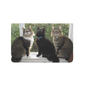Three Cat Friends Pocket Journal