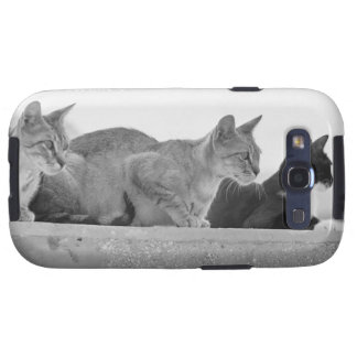 Three cats samsung galaxy s3 case