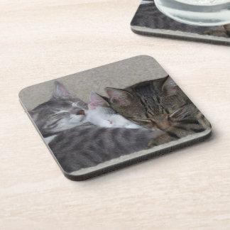 Three Cats Coasters