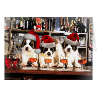 Three Christmas Saint Bernard at the bar Card