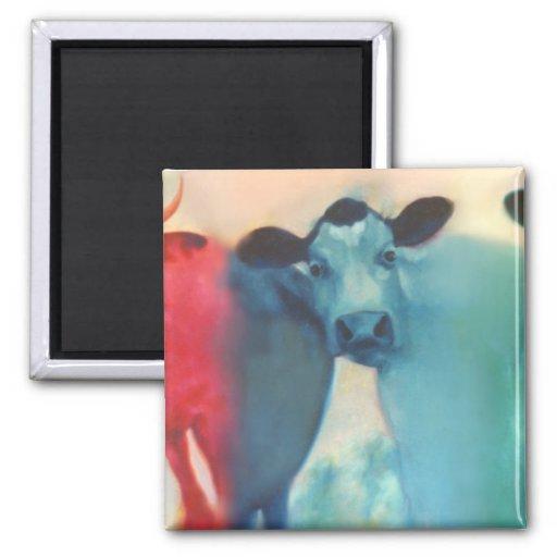 Three Cow Magnet