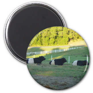 three cows 6 cm round magnet