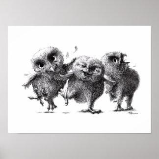 Three Crazy Owls - Owls Poster