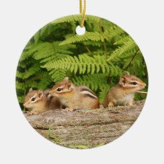 Three Cute Baby Chipmunks Ceramic Ornament