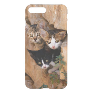 Three Cute Curious Kittens, Photo Phonecover iPhone 8 Plus/7 Plus Case